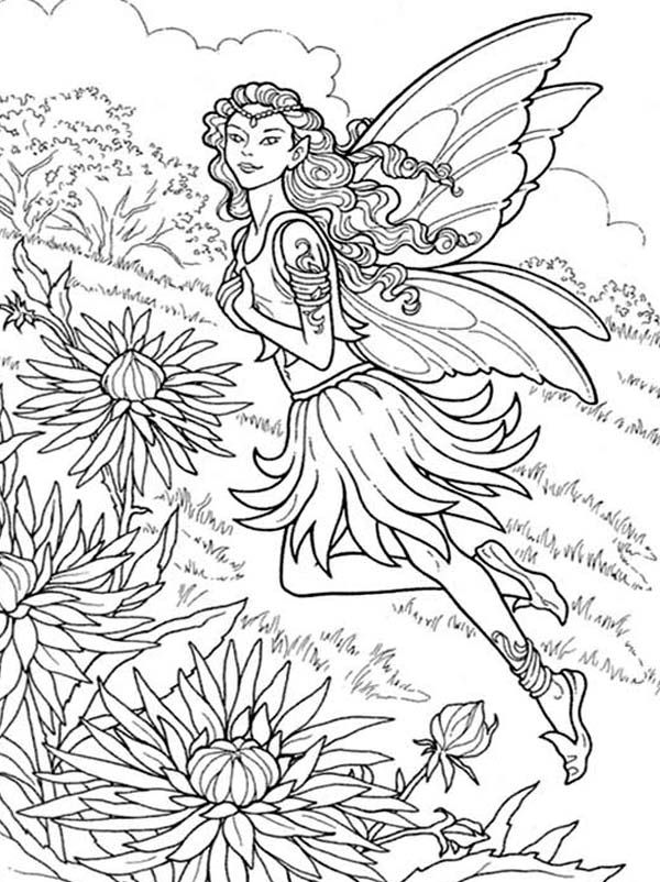 Chrysanthemum, : Beautiful Fairy of Chrysanthemum Coloring Page ...