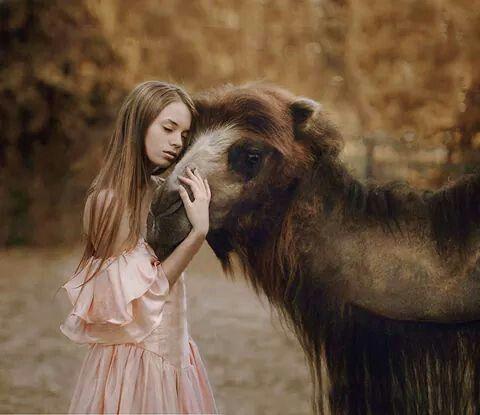 Fotografías con animales