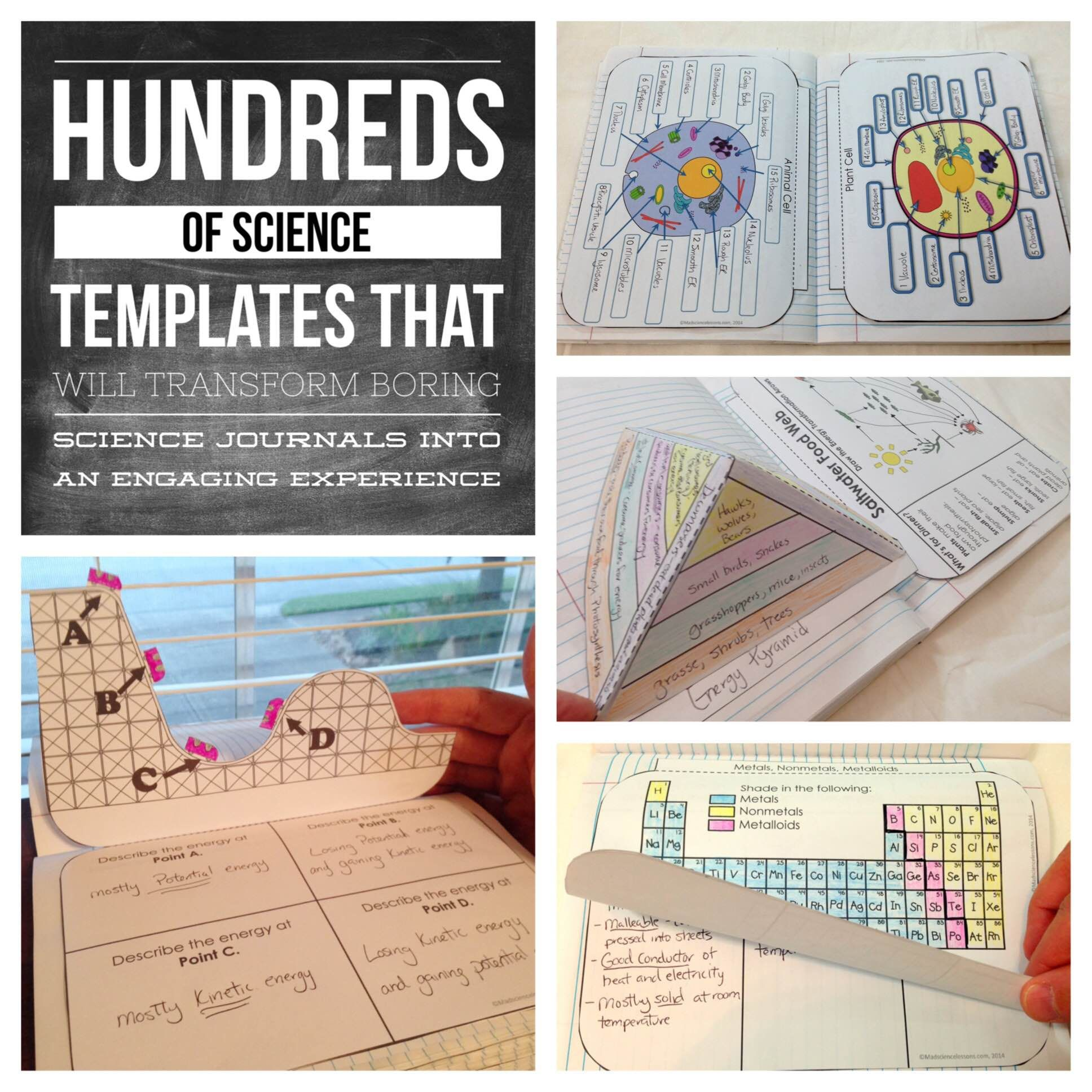 Science Interactive Notebooks Bundle Includes all 8 of my