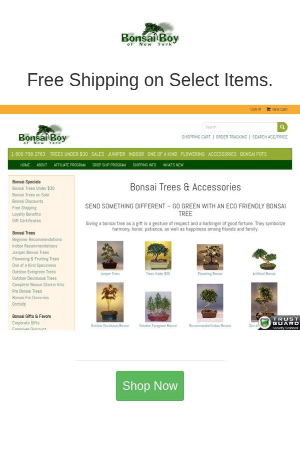Best deals and coupons for Bonsai Boy of New York in 2020