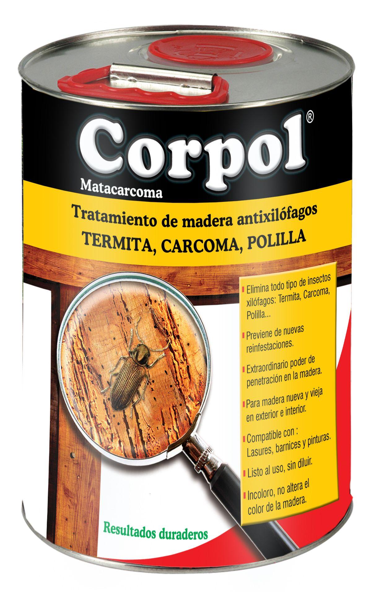 Cómo Eliminar La Carcoma En 2021 Tipos De Insectos Eliminar Termitas Eliminar