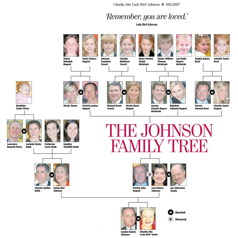 family tree graphic graphic johnson family tree family tree