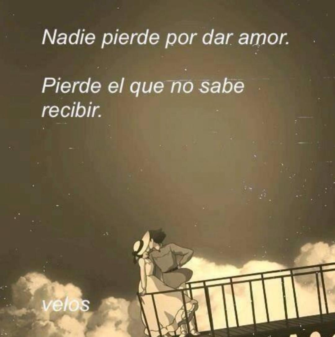 Nadie pierde por dar amor.