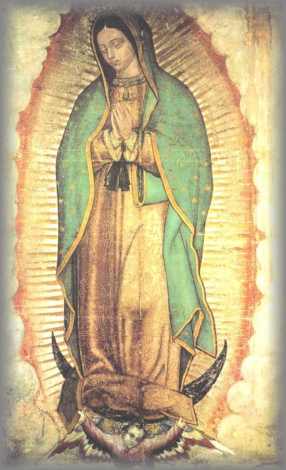 Original Image Of Our Lady Maguay Cloth 1531 Virgen De