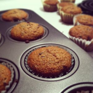 The Most Moist Chocolate Chip Muffins!