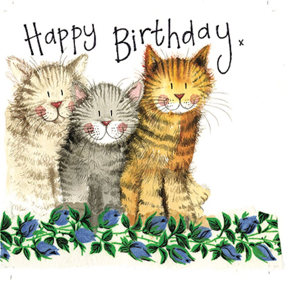 Details About Alex Clark The Three Amigos Cat Birthday Greeting