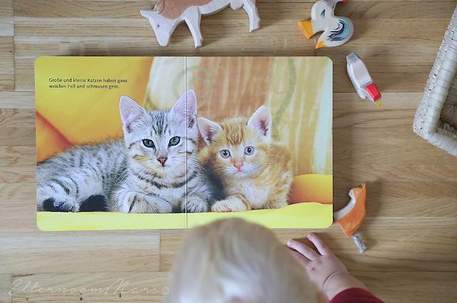 Bücher, die wir lieben für Kinder ab 12 Monaten und für