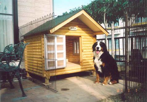 Image Result For Warm Dog House Warm Dog House Dog Houses Dog