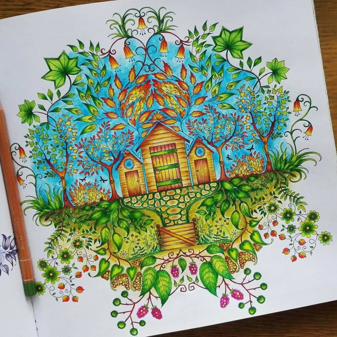 What Design Ideas Are There For A Wooden Screen Thanks To Its Natu In 2020 Secret Garden Coloring Book Finished Secret Garden Colouring Johanna Basford Secret Garden