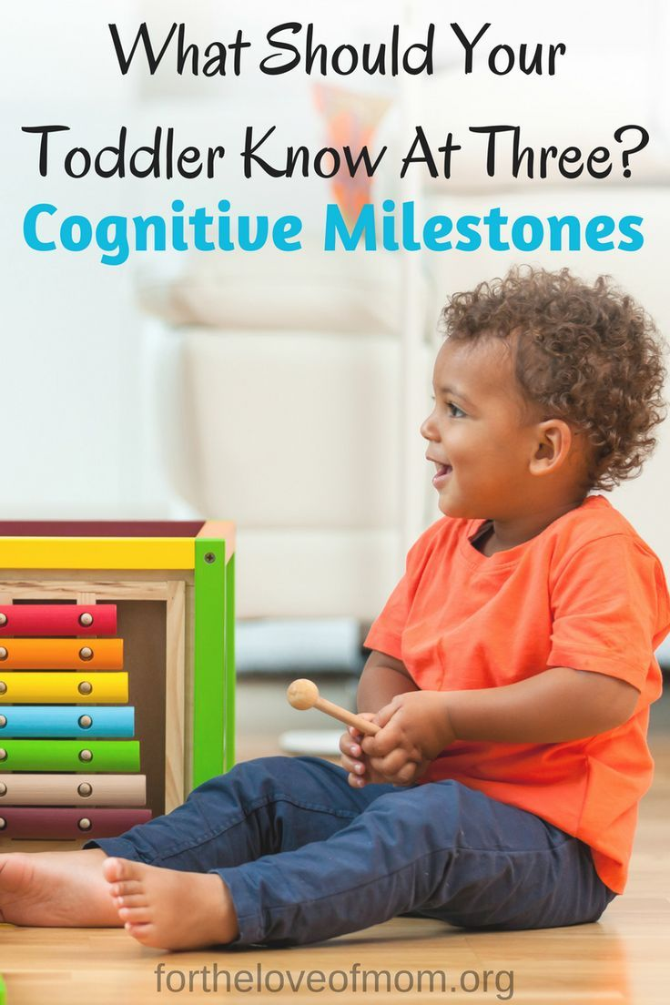 Cognitive Milestones What Should Your Three Year Old Be