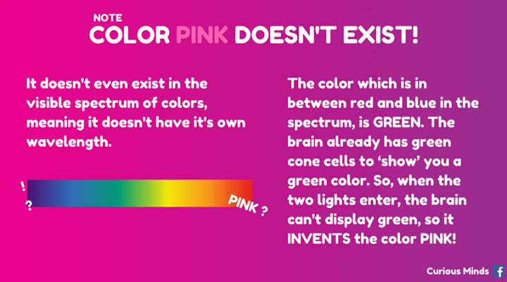 MagentaPink Is The Absence Of The Color Green Basically Here Is