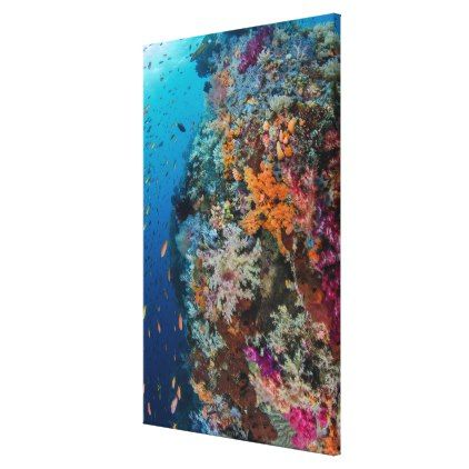 #fishing - #Fish and Coral Reef Scenic Canvas Print