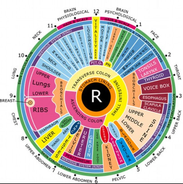 Iridology right eye chart well since  posted the left also best iridologist images on pinterest rh