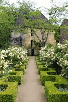 This looks like a French garden.  The roses are probably 'Iceberg' which is unscented.  I would use the hybrid musk rose 'Prosperity' which is gloriously perfumed and flowers continuously through the Summer. www.judithsharpegardens.co.uk