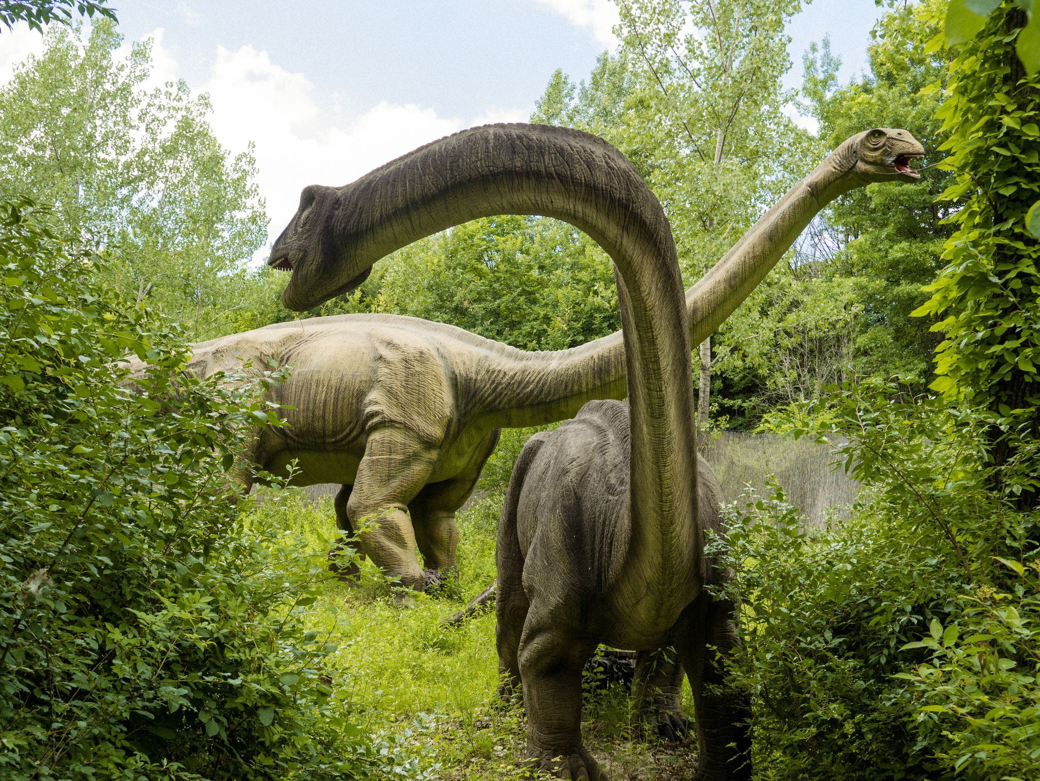 Field Station Dinosaurs Is The Best Family Attraction In New