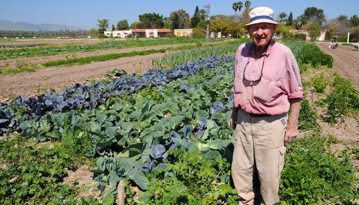 Sde Eliyahoo, the first organic kibuttz
