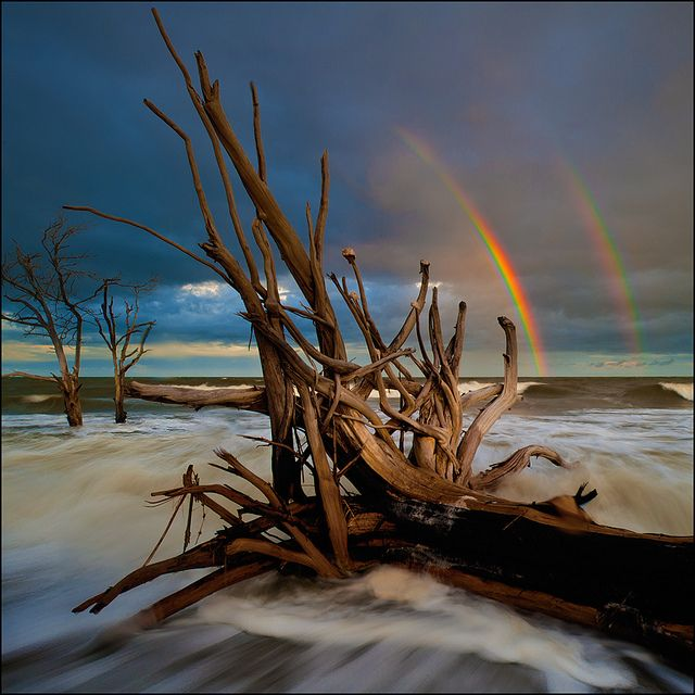 ✯ Double Rainbow Over Boneyard at Edisto Island - SC