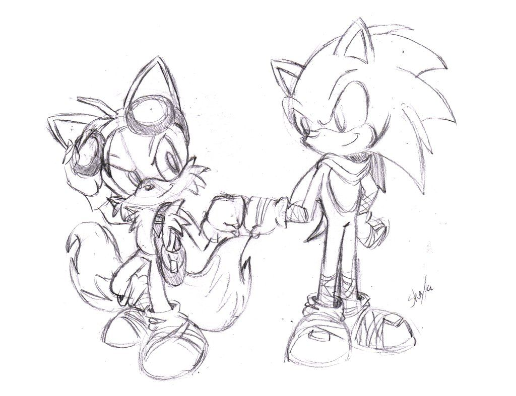Sonic and Tails Sonic Boom by