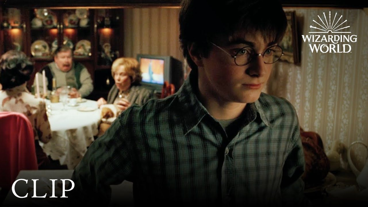 Dinner With Aunt Marge Harry Potter And The Prisoner Of Azkaban The Prisoner Of Azkaban Prisoner Of Azkaban Azkaban