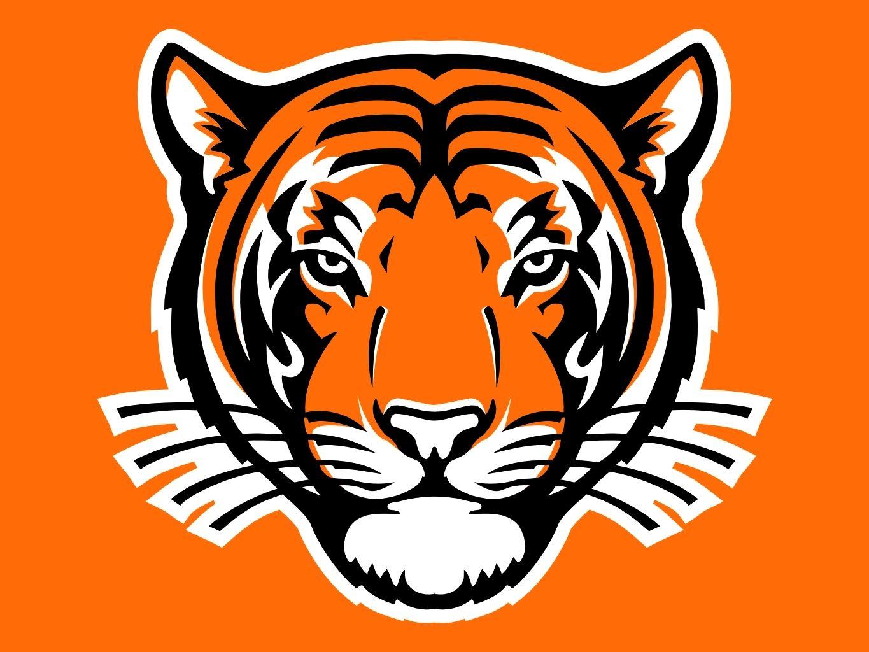 tigers, logo Princeton | mascot Sports  inspiration