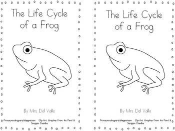 Life Cycle Of Frog Coloring Page