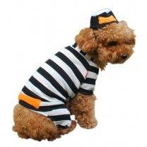 Anit Accessories Prisoner Dog Costume, 8-Inch