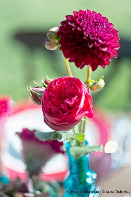Bohemian Wedding~ Mixed Turquoise Vases with Red Garden Roses and Burgundy Dahlias
