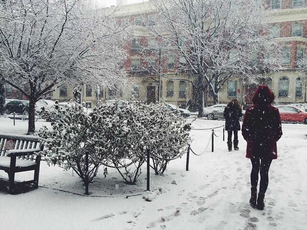 Winter Isnt Over Till Its Over >> 85 Don T Be Fooled Winter Is Not Over Until It S Over Aka
