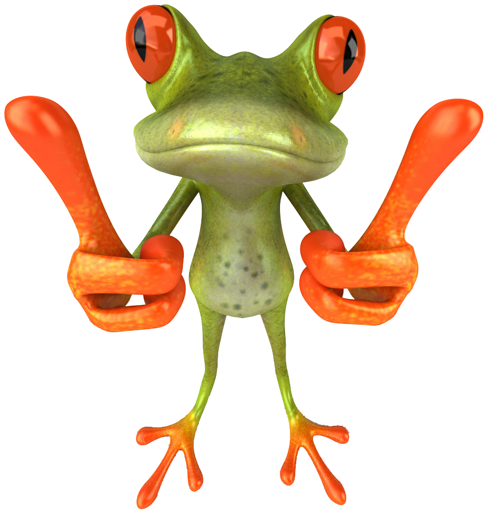 Frog ♡ Funny frogs, Cute frogs, Frog art