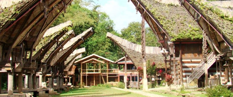 Tana Toraja #indonesie #sulawesi #voyage
