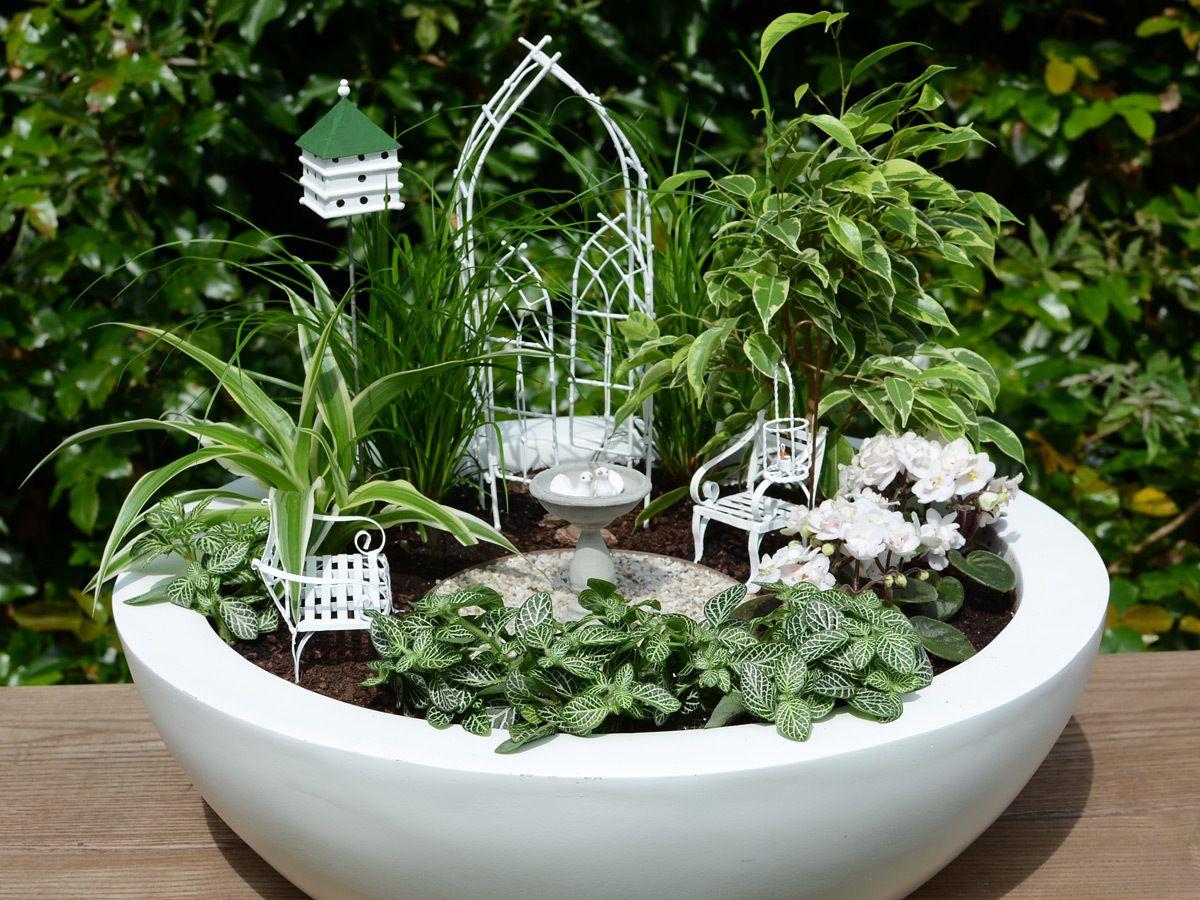 Miniatur Garten Vogelhochzeit Mini Garten Set Weidenbogen Von Jeremie Miniatures Und Zwei Kleine Keramik Tauben Mini Garten Miniaturgarten Geschenk Garten