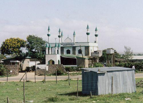 Mosque, Tanzania
