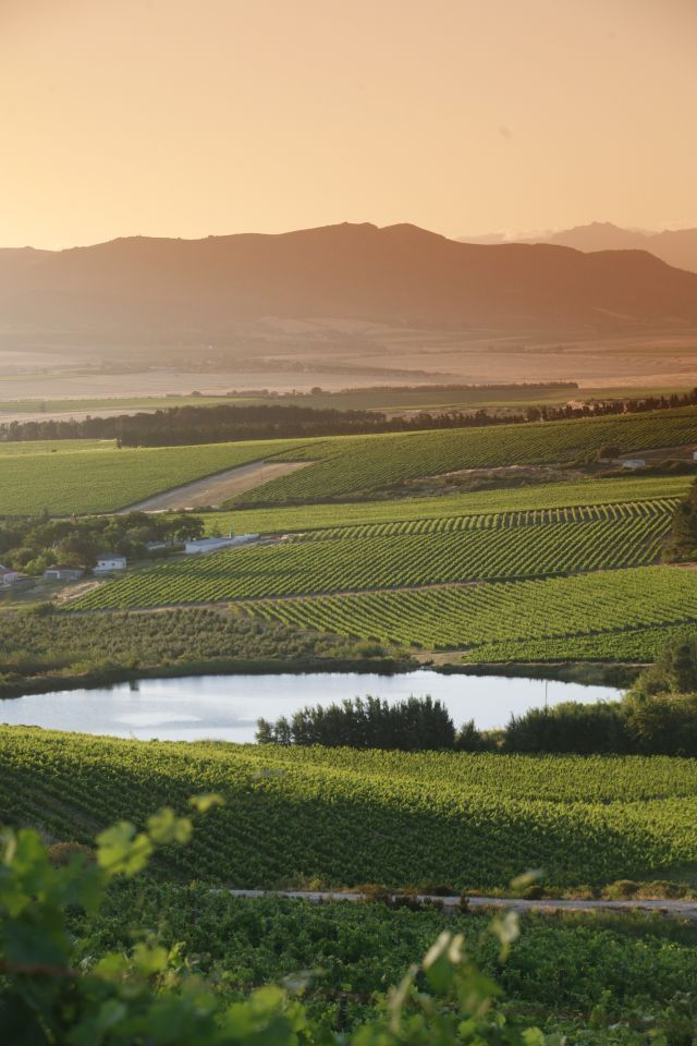 The views from Paardeberg towards Paarl mountain.