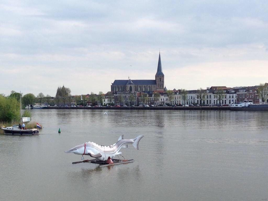 #Kampen aan de #IJssel