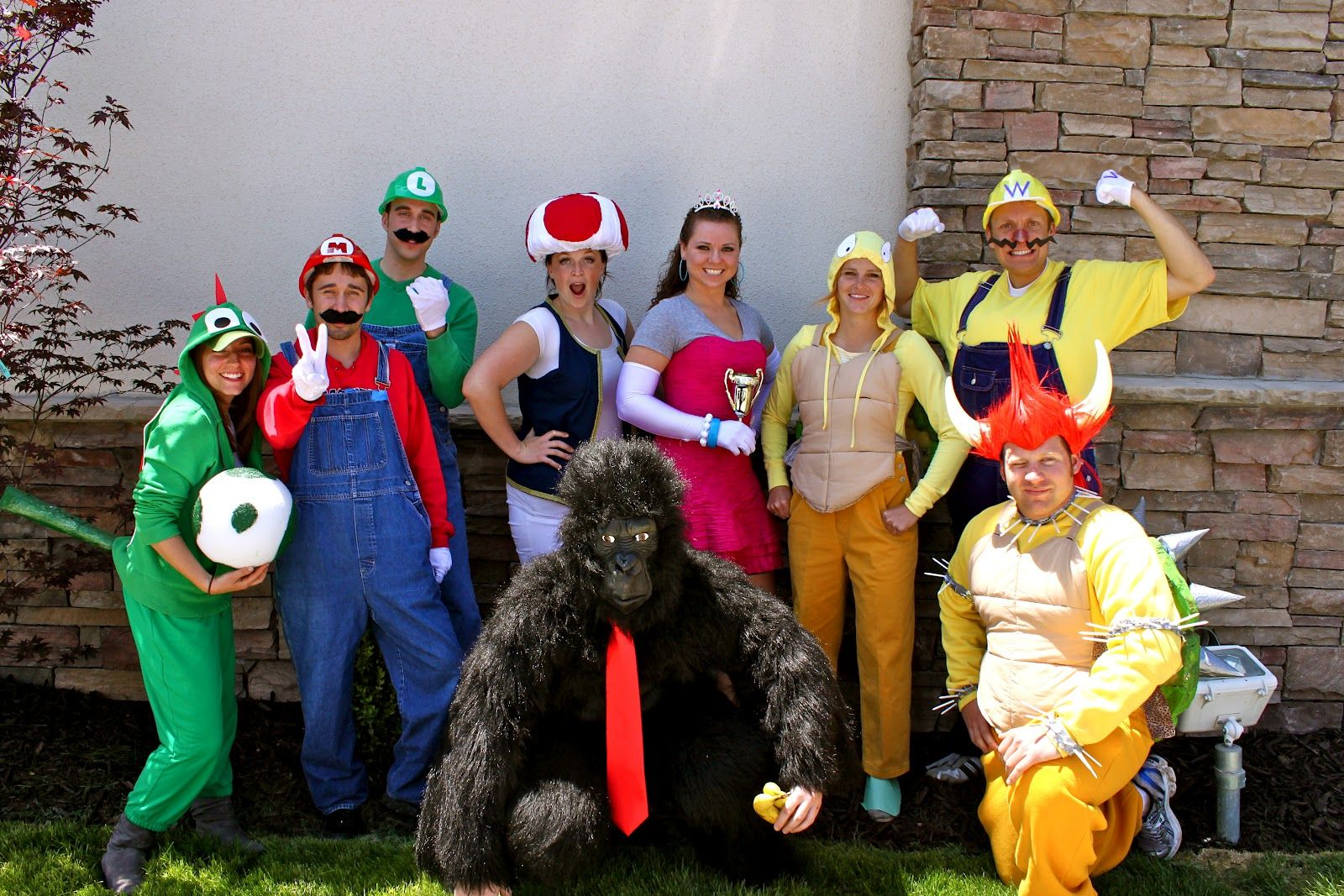 Image Result For Mario Characters Diy Costumes Mario Character