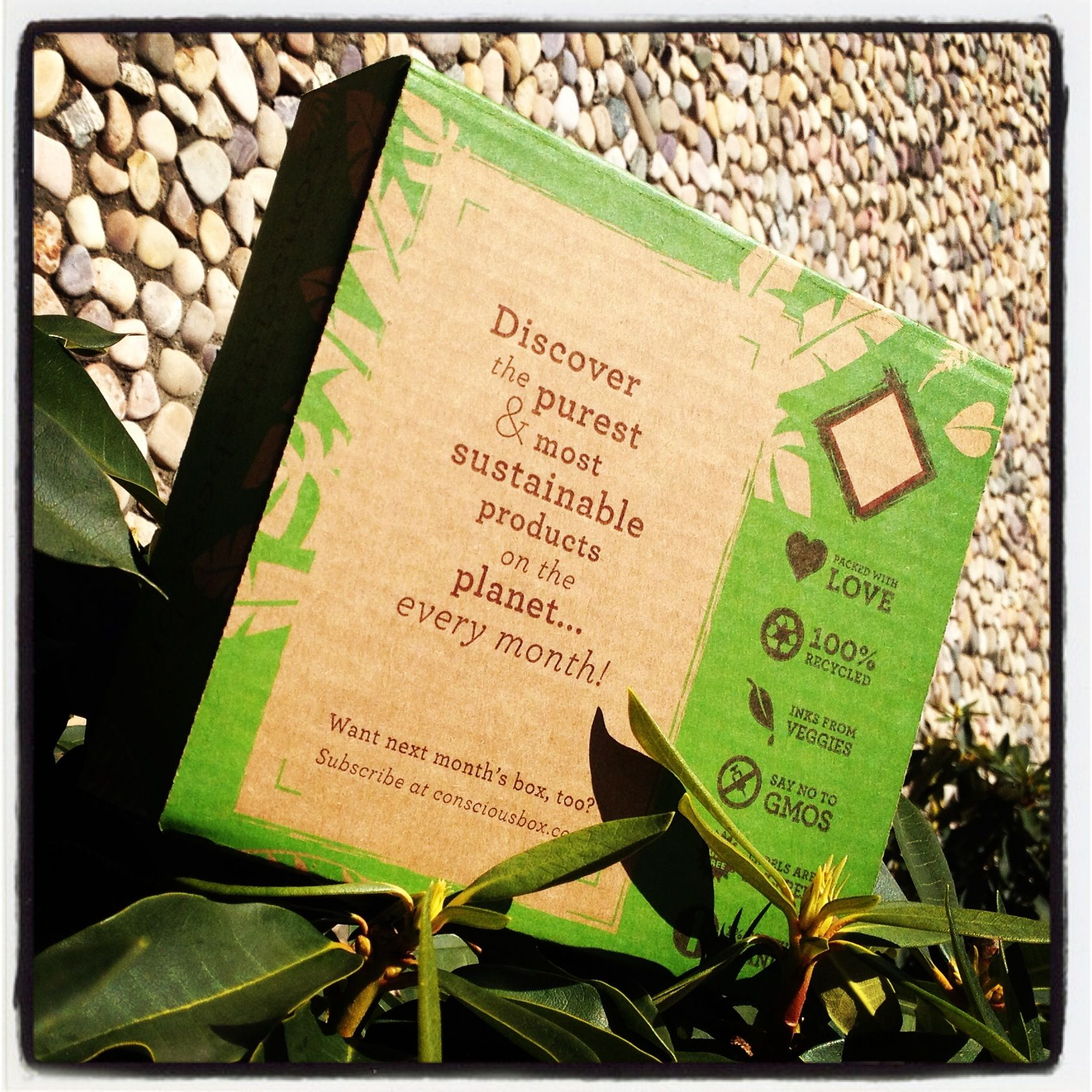 Conscious box #pdx #consciousbox