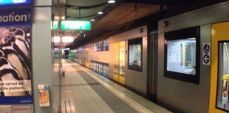 How to reach Sydney's cruise terminals by public transport