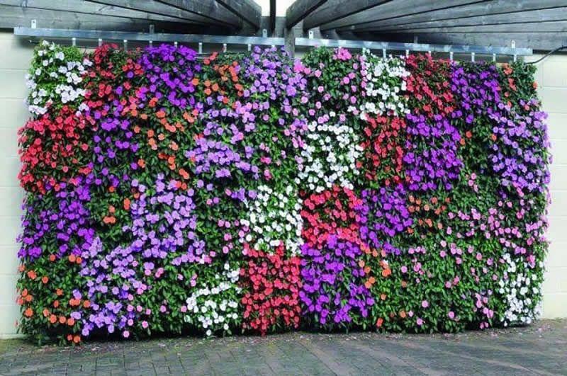 Resultado de imagen para jardines verticales jardines for Pinterest jardines verticales