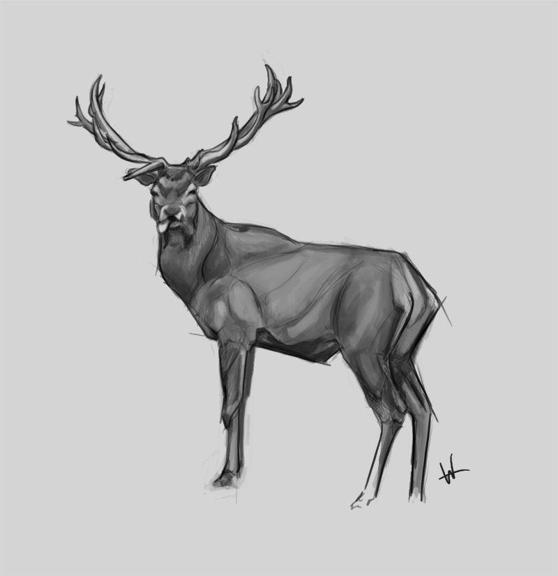 Deer Art ✤ || CHARACTER DESIGN REFERENCES | キャラクターデザイン ...
