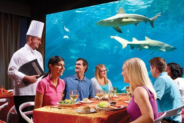 5 Great Places To Eat At Seaworld Orlando