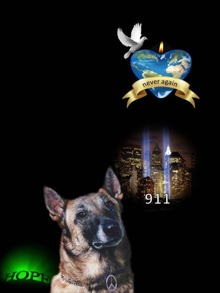 <3 911 remembrance dog version