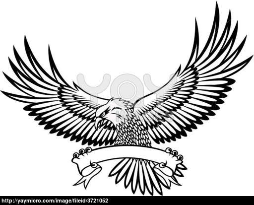 Cool Eagle Drawings | hawk, eagle, air, american, animal ...