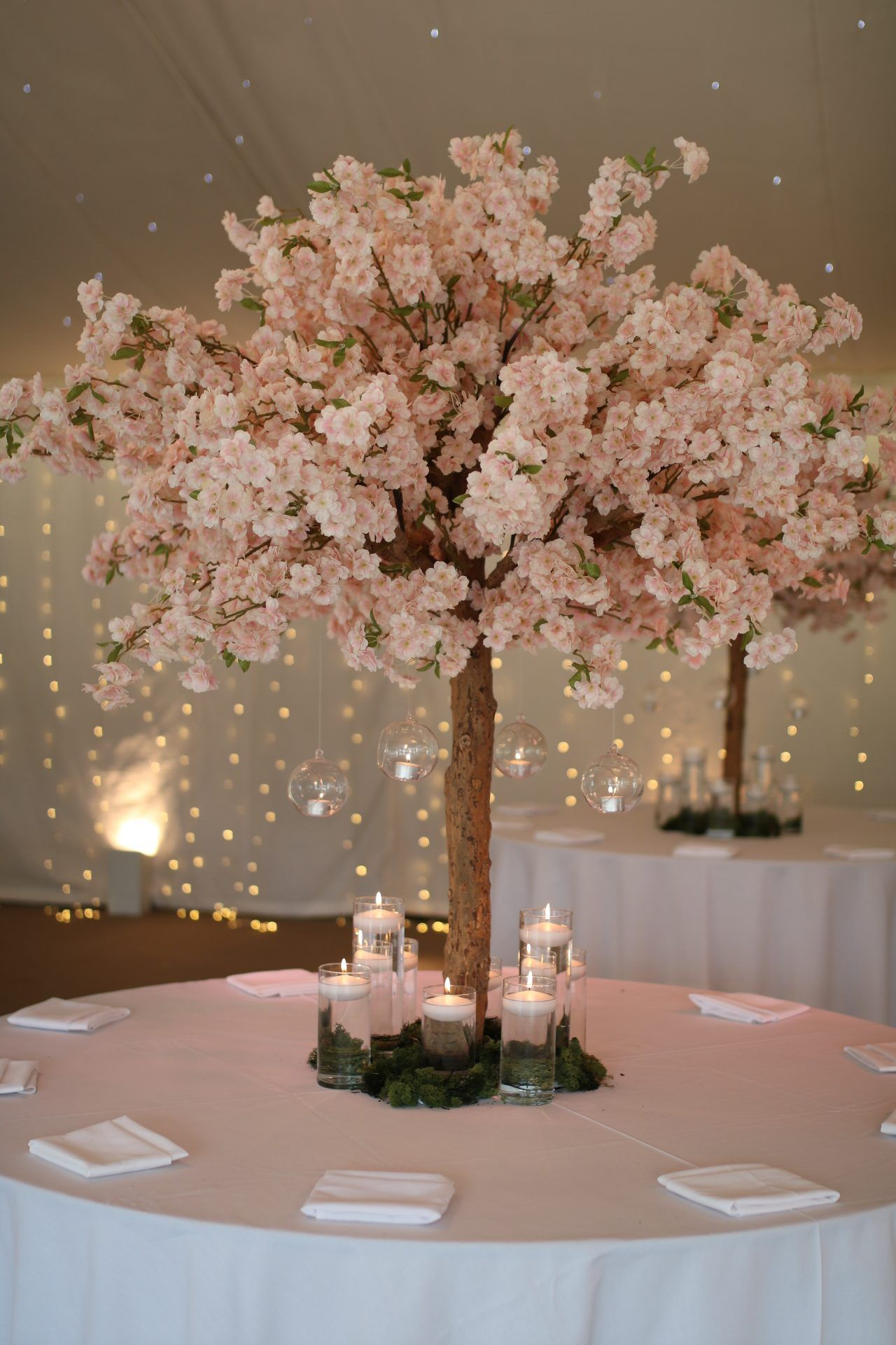 Image Result For Light Up Green Cherry Blossom Tree Cherry