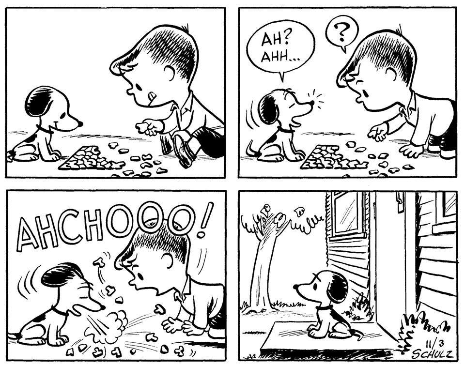 Vintage Snoopy and Linus, the peanuts gang, Charlie Brown, Charles Schultz.