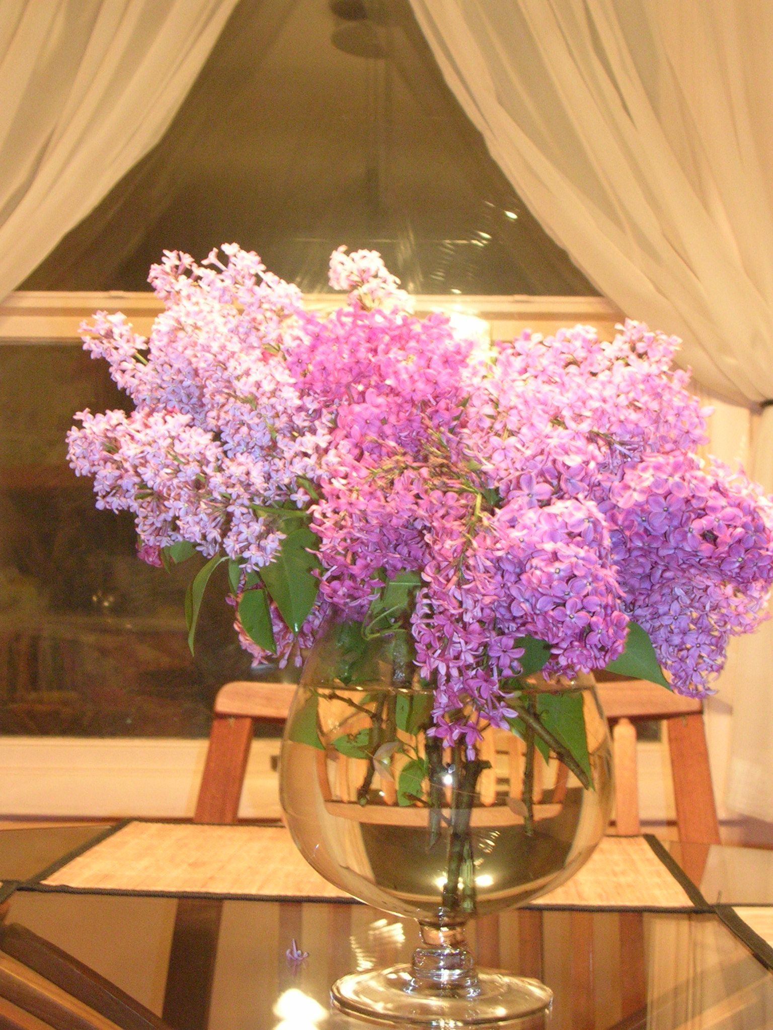 I love lilacs wish they stayed longer Flower quotes