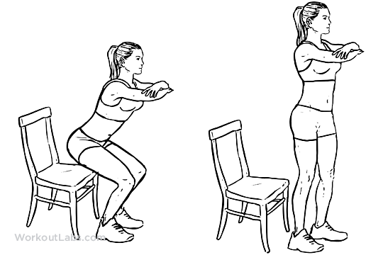 Chair Squats Workout Guide Leg Workout Easy Workouts
