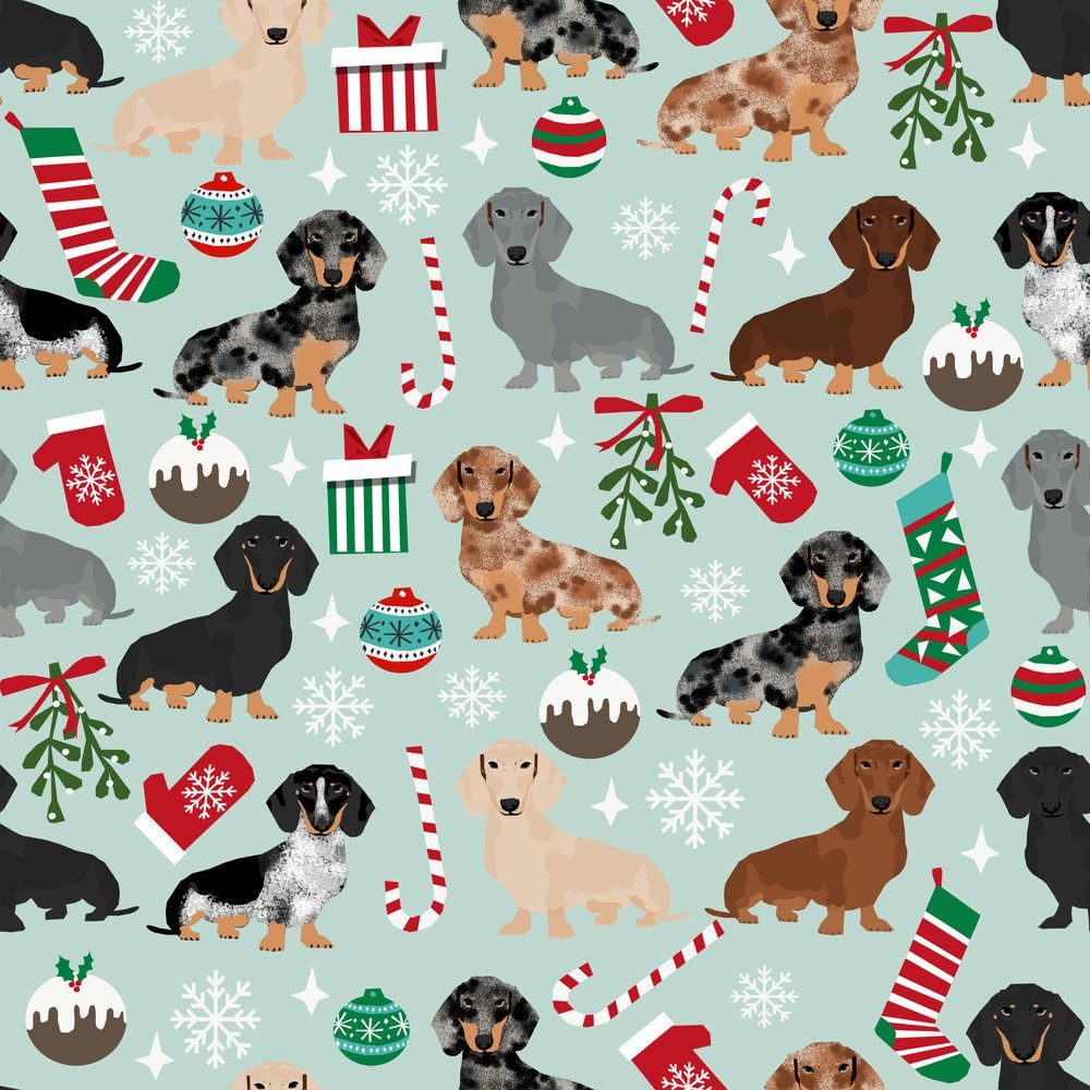 Dachshunds Christmas Fabric Doxie Christmas Dachshunds Dog Xmas By Petfriendly Holiday Pups Cotton Fabric By The Ya Dog Wallpaper Dachshund Dog Dog Holiday