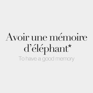"""*Literal meaning: To have an elephant's memory. Our boutique is open! Click the link in our bio and shop our beautiful prints! 10% off your first order with the promo code """"BONJOURFW""""."""