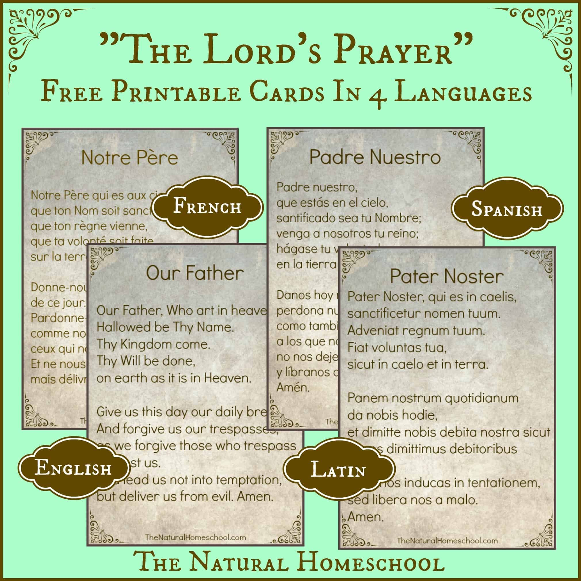 The Best The Lord S Prayer In Spanish Printable And Latin
