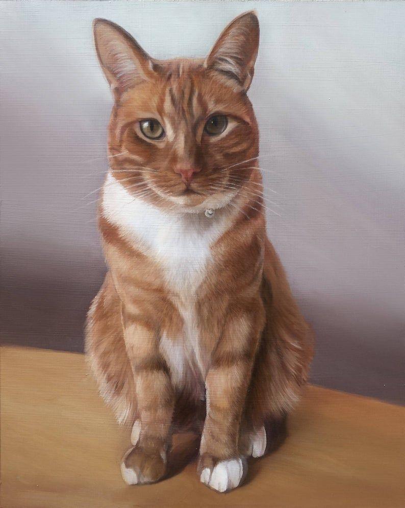 CAT PORTRAIT Pintura al óleo Retrato de mascota Pintura   Etsy